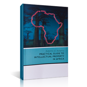 Guide to IP in Africa