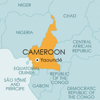 Intellectual Property Guide Cameroon
