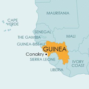 Intellectual Property Guinea