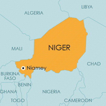 Intellectual Property Niger