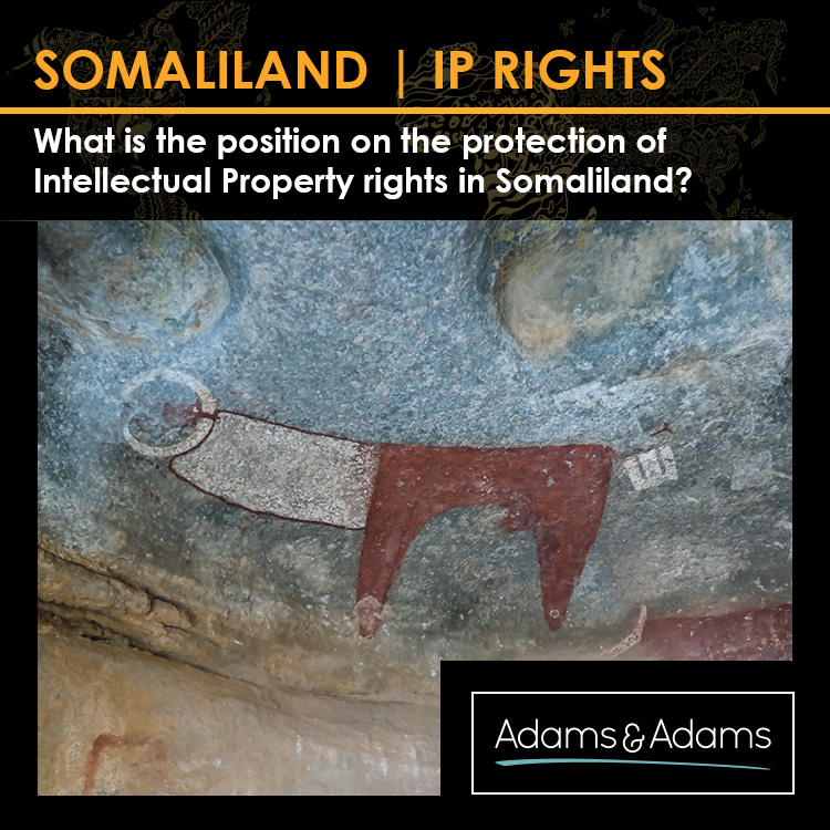 INSIGHTS | INTELLECTUAL PROPERTY RIGHTS IN SOMALILAND