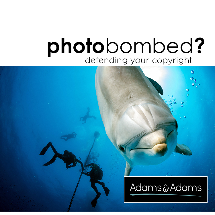PHOTOBOMBED? PROTECTING YOUR COPYRIGHT