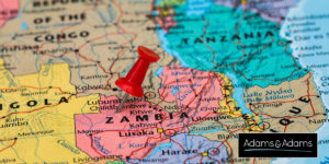 Africa Update-Zambia