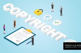 Copyright Protection Explained