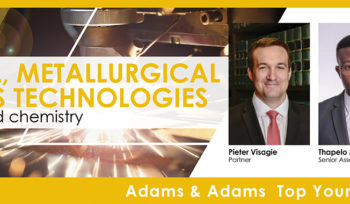 Providing Patent Services in Chemical, Metallurgical and Process Technologies