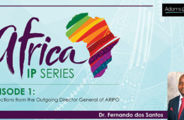 1 Africa Interview Series_Open[4]