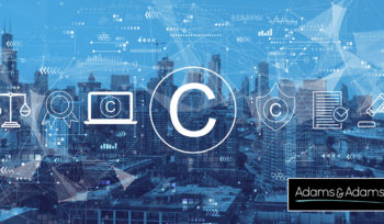 Intellectual Property Law South Africa