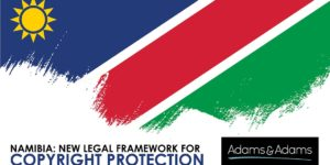 Copyright Namibia_Article Banner