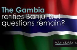 The Gambia 2021_Article Banner (1)